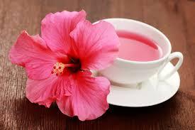 habiscus tea